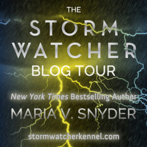 stormwatcher_blogtour_mvs